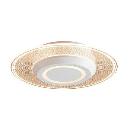 【ふるさと納税】小型シーリングライト 導光板 750lm 電球色 SCL-75L-LGP 【電化製品・インテリア】