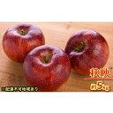 【ふるさと納税】【松崎果樹園】「秋映」約4kg(10〜12玉) 【果物類・林檎・りんご・リンゴ】 お届け:2021年10月上旬〜10月中旬