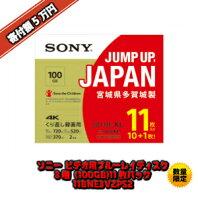 【ふるさと納税】ソニービデオ用ブルーレイディスク 3層(100GB)11枚パック 11BNE3VZPS2