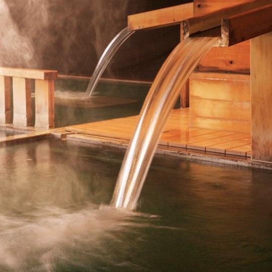 【ふるさと納税】《鳴子温泉・鳴子ホテル》ふるさ...の紹介画像2