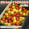 新・彩りミニトマト詰め合わせ