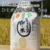(03811)【2018年産】シナイモツゴ郷の米ひとめぼれ白米5kg