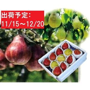 【ふるさと納税】11〜12月 蔵王産 コミス&リーガルレッド約5kg 【ナシ・果物・果物詰合せ・果物類・フルーツ・詰合せ】 お届け:2020年11月15日〜2020年12月20 日