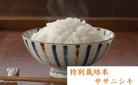【ふるさと納税】特別栽培米 ひとめぼれ&ササニシキ 全35kg【04421-0009】