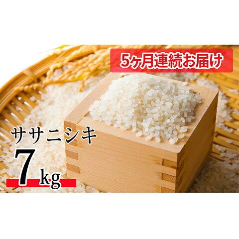 【ふるさと納税】【5ヶ月連続お届け】令和元年産 特別栽培米ササニシキ 7kg 【定期便・米・お米・ササニシキ】