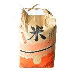 【ふるさと納税】【令和元年産】おおひら産米ひとめぼれ精米9kg×1袋【1018755】
