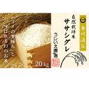 【ふるさと納税】令和元年産 氏家農場の自然栽培米「ササシグレ」10kg×2袋 計20kg 【お米】 お届け:2019年11月上旬より順次出荷