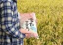 【ふるさと納税】〔A44〕【令和2年産新米】秋田県能代産あきたこまち100% 5kg(白米5kg×1袋)