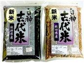 【ふるさと納税】〔A51〕白神古代米(黒米1kg、赤米1kg)セット