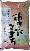 【ふるさと納税】〔B81〕常盤清流米あきたこまち10kg