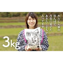【ふるさと納税】なまはげの郷秋田県男鹿産あきたこまち 3kg...