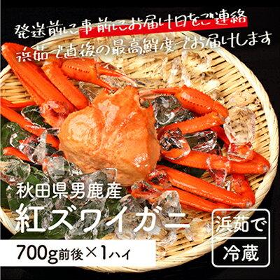 男鹿沖産紅ズワイガニ700g前後×1匹[男鹿なび] [ずわい蟹・ずわいガニ・ズワイガニ]