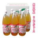【ふるさと納税】鹿角特産 りんごジュース