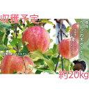 【ふるさと納税】鹿角りんごの木オーナー 収穫約20kg 【佐藤秀果園】