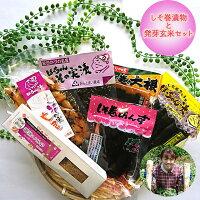 【ふるさと納税】しそ巻漬物と発芽玄米セットA