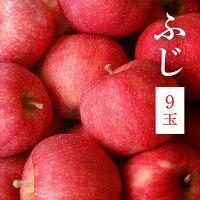 【ふるさと納税】平塚果樹園りんごふじ9玉