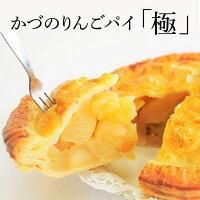 【ふるさと納税】かづのりんごパイ『極』18ホール:1個