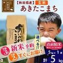 【ふるさと納税】 【玄米】 秋田県産 合川地区限定 あきたこまち 5kg(5kg×1袋) あいかわこまち 農家直送