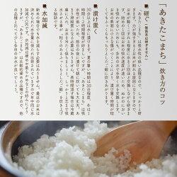 【ふるさと納税】 《定期便6ヶ月》 秋田県産 合川地区限定 あきたこまち 5kg(5kg×1袋)×6回 農家直送 6回 6か月 6ヵ月 6カ月 6ケ月 画像2