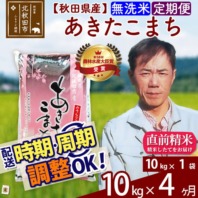 【ふるさと納税】 《定期便4ヶ月》 【無洗米】 秋田県産 あきたこまち 10kg(1...