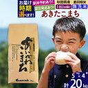 【ふるさと納税】【新米予約・即納選べる】 【無洗米】 秋田県産 合川地区限定 あきたこまち 20kg(5kg×4袋) あいかわこまち 農家直送 一等米 20キロ お米 先行予約