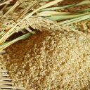 【ふるさと納税】【特A 一等米 特別栽培米(玄米)】 元年産
