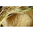 【ふるさと納税】【炭壌米 ゆめおばこ】元年産 玄米 5kg×