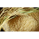 【ふるさと納税】【特A 一等米 特別栽培米(玄米)】 令和2...