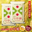 【ふるさと納税】《定期便》山形県産 特別栽培米 つや姫 10