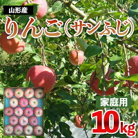 【ふるさと納税】FY21-325【家庭用】サンふじりんご10kg(優品)