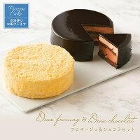 【ふるさと納税】FY21-190フロマージュ&ショコラセット【冷凍】