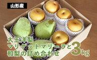 【ふるさと納税】FY20-581大玉洋梨マリゲットマリーラと和梨の詰め合わせ3kg