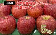 【ふるさと納税】FY20-578完熟無袋栽培ふじりんご特選大玉秀品5kg入り