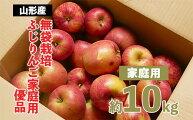 【ふるさと納税】FY20-579【家庭用】無袋栽培ふじりんご優品約10kg入り