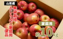 【ふるさと納税】FY20-579 【家庭用】無袋栽培ふじりん