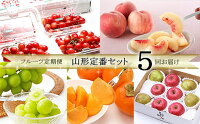【ふるさと納税】FS20-004[定期便5回]フルーツ定期便山形定番セット