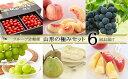 【ふるさと納税】FS20-014 [定期便6回] フルーツ定期便山形の極みセット