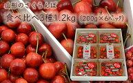 【ふるさと納税】FS20-096【令和3年産先行予約】山形のさくらんぼ食べ比べ3種1.2kg(200g×6)