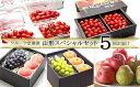 【ふるさと納税】FS20-060 [定期便5回] フルーツ定期便 山形スペシャルセット