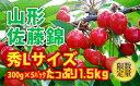 【ふるさと納税】FY18-937 ♪旬♪山形佐藤錦 秀L た...