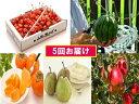 【ふるさと納税】FY18-842【先行予約】フルーツ定期便 ...