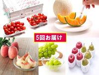 【ふるさと納税】FY18-847【先行予約】フルーツ定期便少量食べきりセット(5回)
