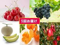 【ふるさと納税】FY18-848【先行予約】フルーツ定期便蔵王コース(5回)