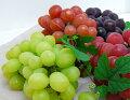 【ふるさと納税】人気のブドウが返礼品でもらえる自治体を教えてください。
