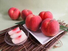 【ふるさと納税】FY19-327山形産白桃小玉サイズ約5kg