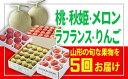 【ふるさと納税】FY19-280 【定期便5回】♪フルーツ王...