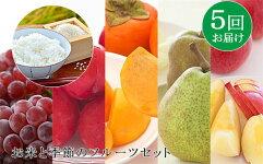 【ふるさと納税】FY19-170【定期便5回】お米と季節のフルーツセット