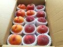 【ふるさと納税】FY19-691 白桃と黄桃の食べ比べセット