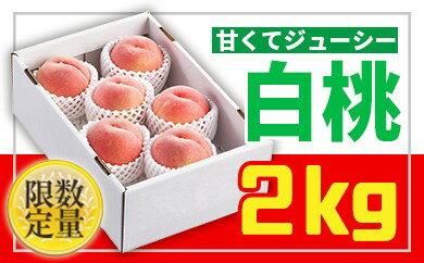 桃おすすめ:「先行予約」白桃秀品2kg