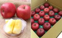 【ふるさと納税】FY18-211山形のふじりんご秀品5kg(12〜20玉)